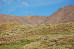 Alaska 2007 163