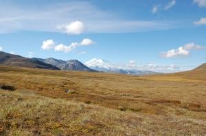 Alaska 2007 205