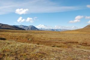 Alaska 2007 220