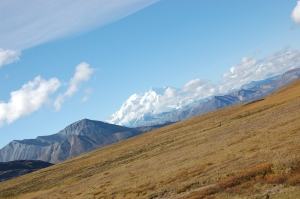 Alaska 2007 231