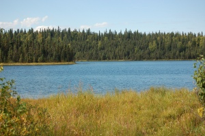Alaska 2007 406