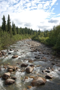 Alaska 2007 436
