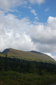 Alaska 2007 463