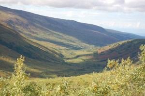 Alaska 2007 469