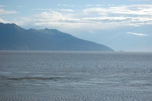 Alaska 2007 493