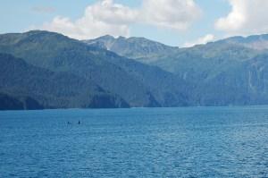 Alaska 2007 577