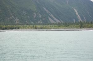Alaska 2007 726