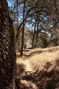Henry Coe State Park (9 of 15)