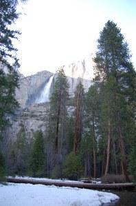 California 2008 (128)