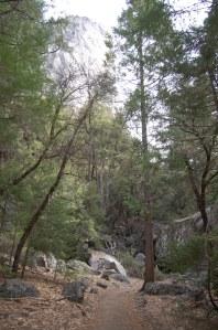 California 2008 (177)