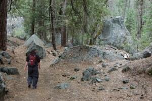 California 2008 (265)