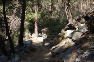 California 2008 (532)