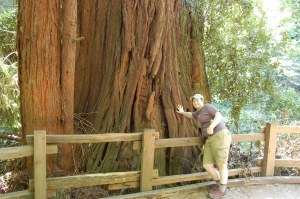 California 2008 (541)