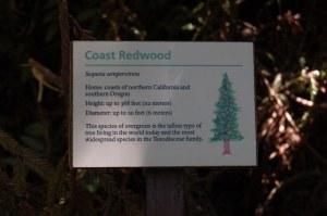 California 2008 (542)