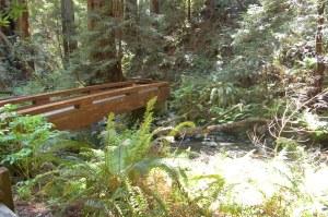 California 2008 (560)