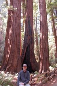 California 2008 (563)