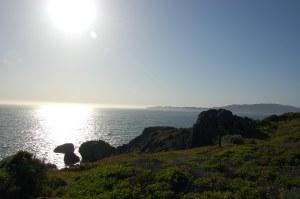 California 2008 (609)