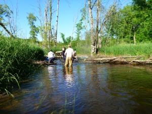 Portage Creek-11