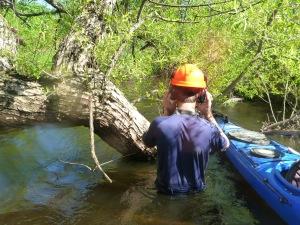 Portage Creek-2