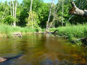 Portage Creek-9