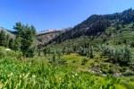 Sequoia Kings Canyon-299