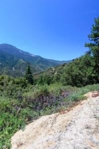 Sequoia Kings Canyon-323