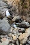 Sequoia Kings Canyon-404