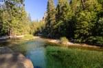 Sequoia Kings Canyon-427