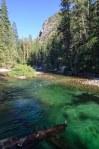 Sequoia Kings Canyon-490