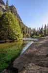 Sequoia Kings Canyon-504
