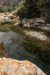 Sequoia Kings Canyon-820