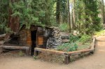 Sequoia Kings Canyon-907