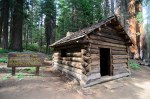 Sequoia Kings Canyon-948