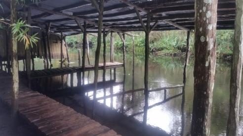 Loxahatchee River-24