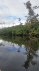 Loxahatchee River-31