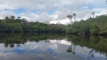Loxahatchee River-32