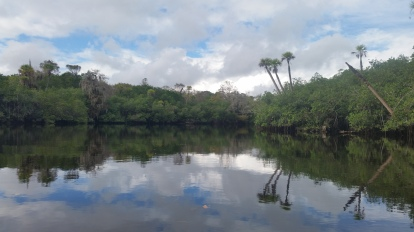 Loxahatchee River-32