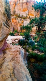 East Canyon Overlook 5S-4