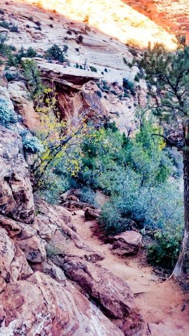 East Canyon Overlook 5S-9