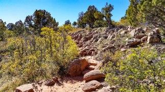Kolob Canyon 5S-13
