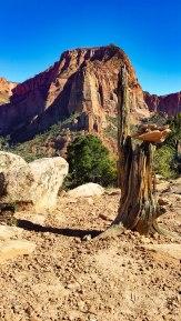 Kolob Canyon 5S-28