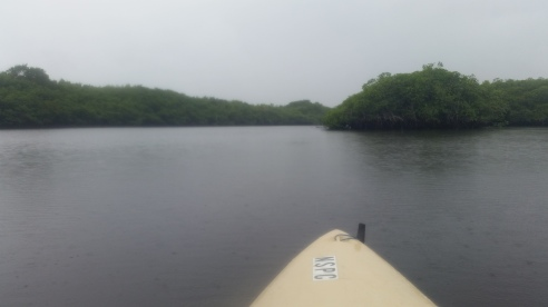 Loxahatchee River-1