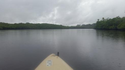 Loxahatchee River-2