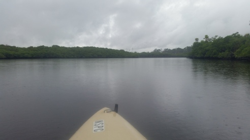 Loxahatchee River-2