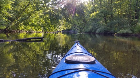 Island Laske Canoe Camp-22