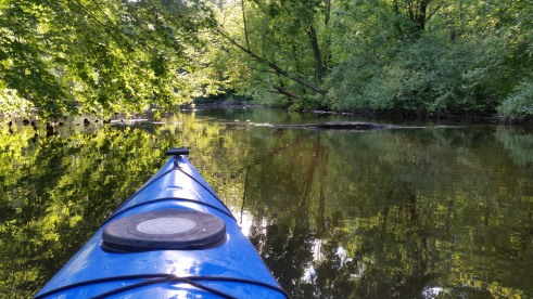 Island Laske Canoe Camp-24
