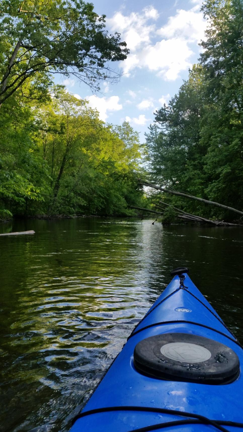 Island Laske Canoe Camp-35