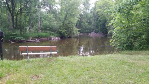 Island Laske Canoe Camp-58
