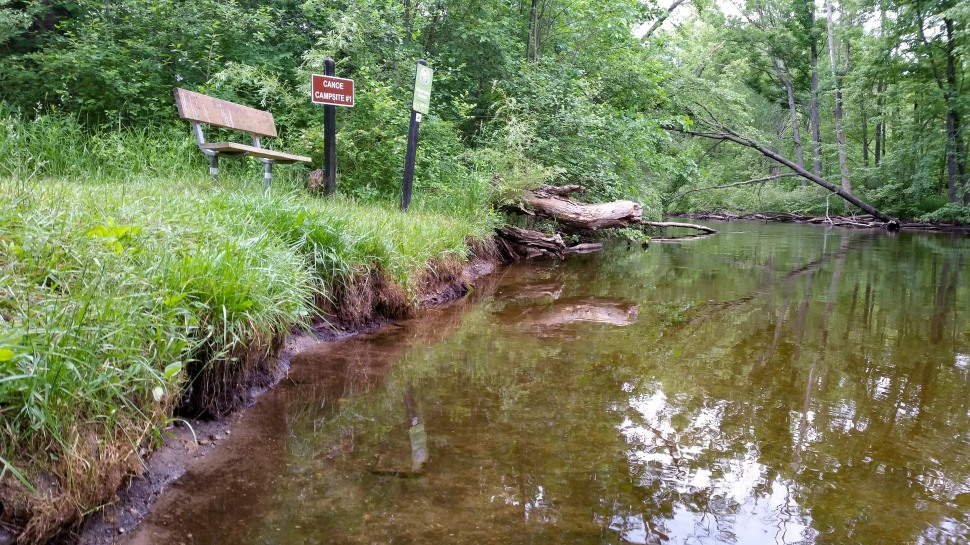 Island Laske Canoe Camp-61