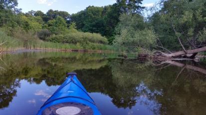 Island Laske Canoe Camp-8